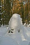 Снежная куча в лесу, вокруг елочки. Похожая на человеческую скульптуру. Снежная голова смотрит направо. Природа нарисовала-снегом и ветром!