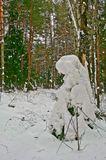 снежные скульптуры. творение природы. самый лучший художник-это природа.