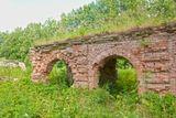 В селе Ольгово, бывшем имении Апраксиных.