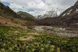 Дигория, Северная Осетия...