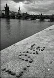 Place photography, near Cihelna street-Small Side-Prague-1