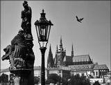 Mесто фотографирования, Карлов мост-Прага-1