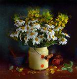 chaparin.v.p., бидончик, натюрморт, персики, плошка, ромашки, цветы