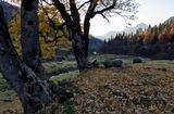 Осень, горы