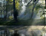 Шуваловский парк. Июнь