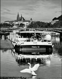 Mесто фотографирования, Дворжакова набережная-Cтарый Город-Прага-1
