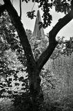 Mесто фотографирования, у улице аполинарcka-Новый Город-Прага-2