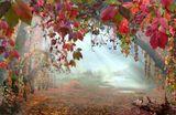 Дикий виноград,туман,озеро,лошадь