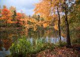 Осень, пруд, краски