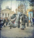 "Festival of street theaters ""Golden Lion"" . Lviv 2017"