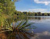 Река Москва, Коломна