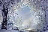 зима,красивая,снег,луч,Скоро вечер