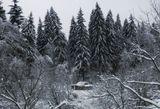 Подмосковье,зима,природа,село Михайловское  Подольского района
