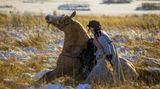 Её лошади знают главный секрет - жизнь это взлеты и падения