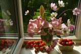 Натюрморт,цветы,ягоды
