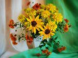 Натюрморт,цветы,лето