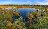 Ковровое болото в Калужском крае.Тихий вечер.Сентябрь