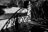 Mесто фотографирования, Королевский сад-Пражский Град -Прага-1