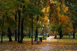 """""""С деревьев падает, кружась, листва,Лоскутным пледом землю укрывая.Уснёт природа зимним сном, тогда Придёт метельная пора шальная.""""Московский парк"""