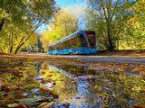 Москва, Сокольники