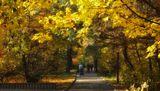 Серебряный Бор,Москва,осень