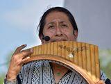 Перуанская флейта