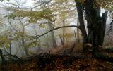 Железноводск. Октябрь