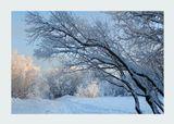 25.01.2019 Северный атмосферный парк Джонатана Свифтаmusic: Tim The Lion Tamer - Whistleblowerhttps://www.youtube.com/watch?v=8tsfRz5rk4M