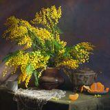 цветы, мимоза,весна,натюрморт