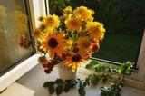 натюрморт,цветы