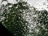 Небо над головой, но стекло и вода ближе.