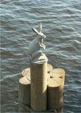 """Памятник """"Зайчику, спасшемуся от наводнения"""" - скульптура в Санкт-Петербурге, находится у Иоанновского моста, ведущего в Петропавловскую крепость через Кронверкский пролив. Скульптура имеет высоту 58 см, выполнена из сплава силумина, алюминия и дюраля, и покрыта нитридом титана..."""