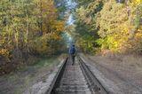 осень, утро, железная дорога, лес, человек, турист