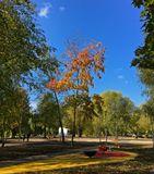 осень, парк