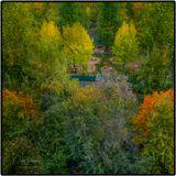 Доступно изображение на печать в разрешении 4049х4049 px. shishkov.dmitry@gmail.com Москва, осень, цвета, палитра, деревья, парк, зелень, увядание,