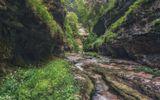 Апшеронский район Краснодарского края, окрестности Гуамки, ручей и каньон под названием Сухая балка. Кто-то когда-то сильно поиронизировал, назвав так это место. Именно вода, а точнее обилие водопадов в теснинах делают эти места достаточно труднопроходимыми. Упершись в очередную стенку с водопадом, замыкающую скальный коридор, приходится откатываться назад, карабкаться вверх по скальникам и искать обходные пути через дебри на крутых слонах.