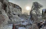 Обледенение города Владивосток  Очень многие деревья поломались