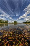 Карелия,озеро,природа,Ладога,