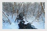 Северный атмосферный парк Джонатана Свифта  music: Ghostly Kisses - Stay https://www.youtube.com/watch?v=gLIrZKE5Ukc