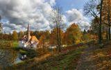 Гатчина,Приоратский дворей,осень,собака,замок,речка,