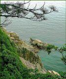 Вид с острова Петрова.  Условия съемки - висела над обрывчиком.