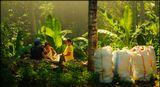 На заготовке кокосовой скорлупы, которую потом пережигают в уголь