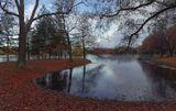 Пушкин,осень,природа,озеро,