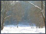 Снег, ярко освещенный солнцем и нерезкий задний план в синеватой дымке оставлены специально ради общего приятного и спокойного настроения от просмотра картинки. :)
