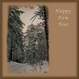 Поздравляю всех с Новым Годом!