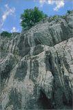 Венгрия, окрестности Лилафюреда, август 2003 г.