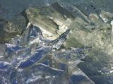 Ледяная черепаха у входа -в ледяную пещеру.