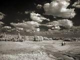 инфракрасный вариант вот этого фото http://www.lensart.ru/picture-pid-5f96.htmснято сони 828