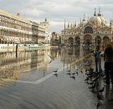 Вода идет прямо из под земли, наверное по специальным каналам. Такое чувство, что венеция - дрейфующий остров. В тот день вода на площади поднялась на 60 см.