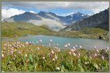 Горный Алтай, июль-2006, Аккем.Желающих побывать в горах Алтая приглашаю на сайт http://pohodnik.info